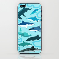 Sharks iPhone & iPod Skin by Raffles Bizarre