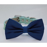 Royal Blue dog Bow tie attached to Blue Collar, Pet wedding accessory, Some thing Blue, Ocean , Wedding dog collar