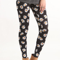 Nollie Daisy Print Leggings