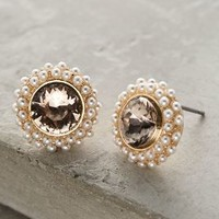 Pearlring Posts by Anthropologie in Gold Size: One Size Earrings