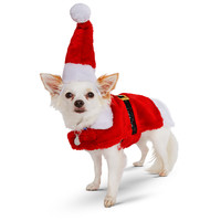 Petco Holiday Santa Suit for Dogs
