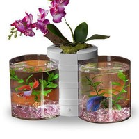 eLive Betta Cylinder Tank Set & Desktop Planter White