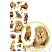 Realistic Lions and Lion Cubs Shaped Animal Themed Photo Stickers for Decorating
