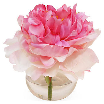 "7"" Peony in Bubble Vase, Blush 