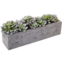 Nearly Natural Garden Succulent Silk Plant with Concrete Planter - Walmart.com