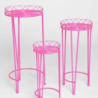 Plum & Bow Wire Plant Stand - Set Of 3- Blush One