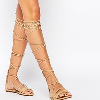 Daisy Street Lace Up Gladiator Flat Sandals at asos.com