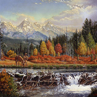 Western Mountain Landscape Autumn Mountain Man Trapper Beaver Dam Frontier Americana Oil Painting Print By Walt Curlee