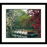 Great American Picture Boston Swan Boats Framed Photograph - BOS100 - Decor