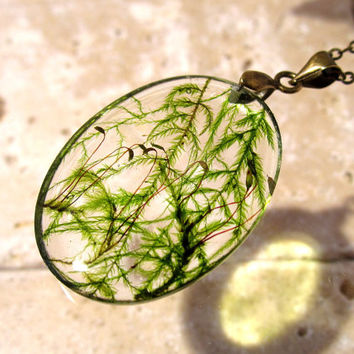 Cat Tail Moss (Isothecium myosuroides)  Necklace,  bryophyte pendant, woodland, forest, plant jewelry, leaf jewellery, Vancouver, BC