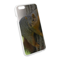 Squirrel Snap On Hard Protective Case for Apple iPhone 6