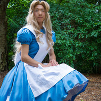 Alice in Wonderland inspired Costume Set