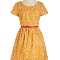 See the Delight Dress