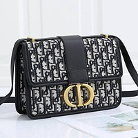 Christian Dior New Products Fully Printed Embroidered Letters Ladies Shopping Handbag Shoulder Bag