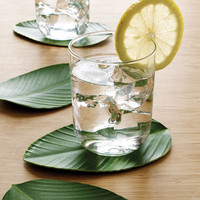 Jungle Leaf Coasters - S`