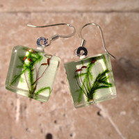 Moss Earrings, plant jewelry, leaf jewellery ,