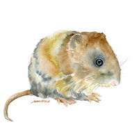 Vole Watercolor Painting - 8 x 10 - Giclee Print 8.5 x 11