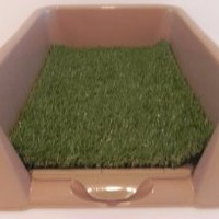 """Rascal Dog Litter Box """"Little Squirt"""" (tm) - 23 by 16 by 6 FOR TOY BREEDS"""
