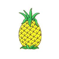 Pineapple Iron on Patch/ Fruit Patches